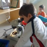 cody looking through science magnifier at bugs