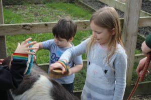 Pony grooming at 4 Kingdoms Adventure Park