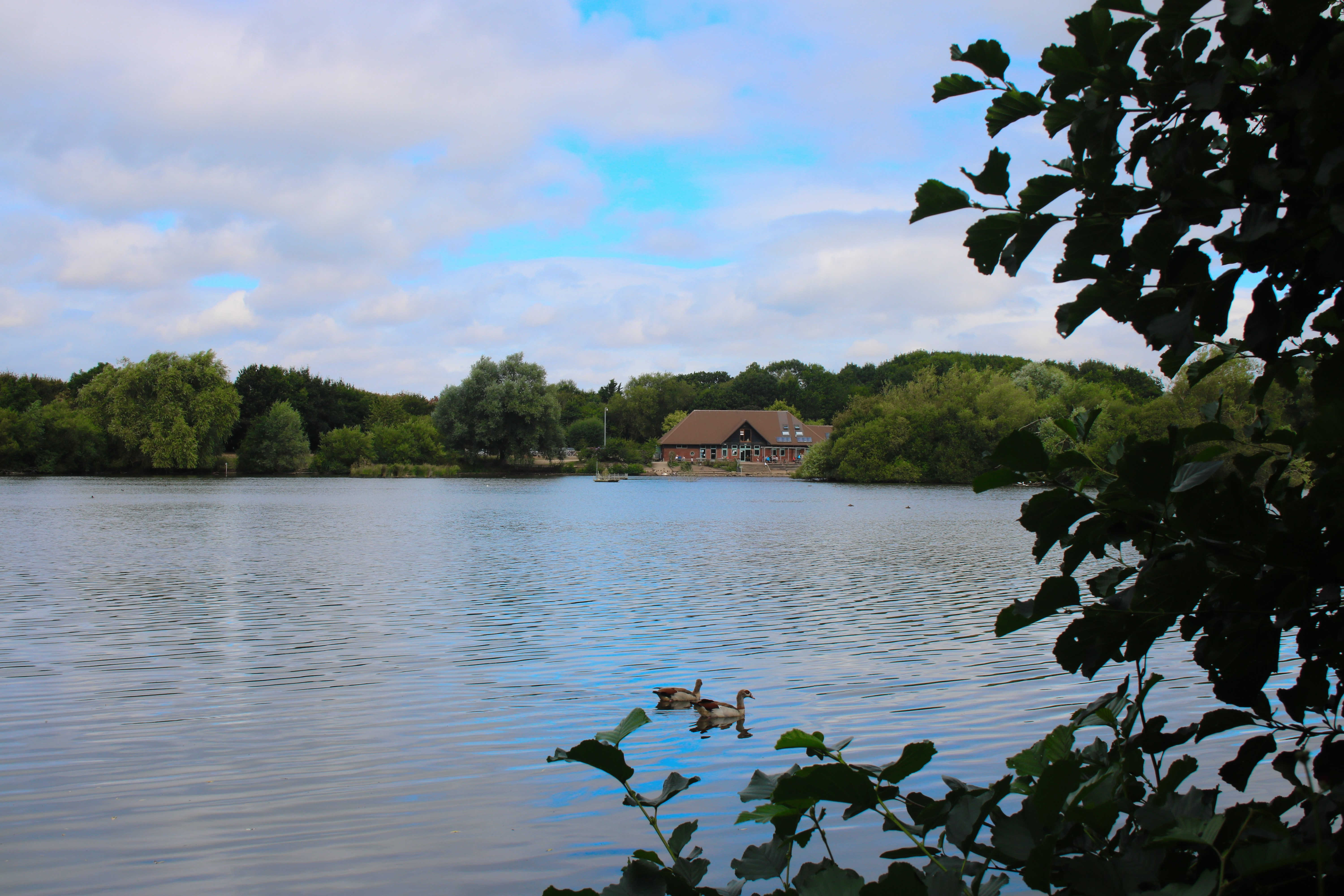 view across the lake to the visitor centre at the Nature Discovery Centre