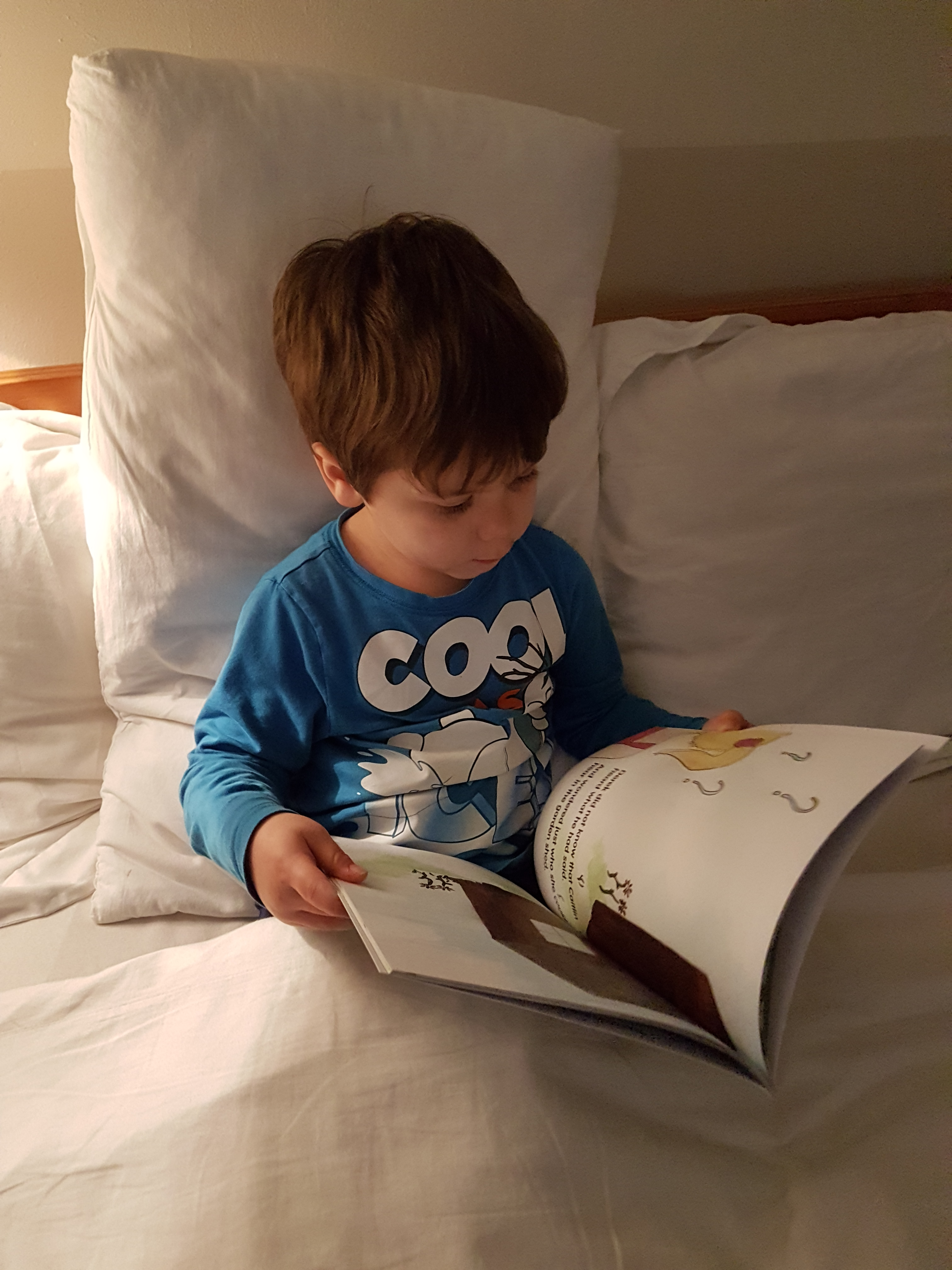 cody reading a book