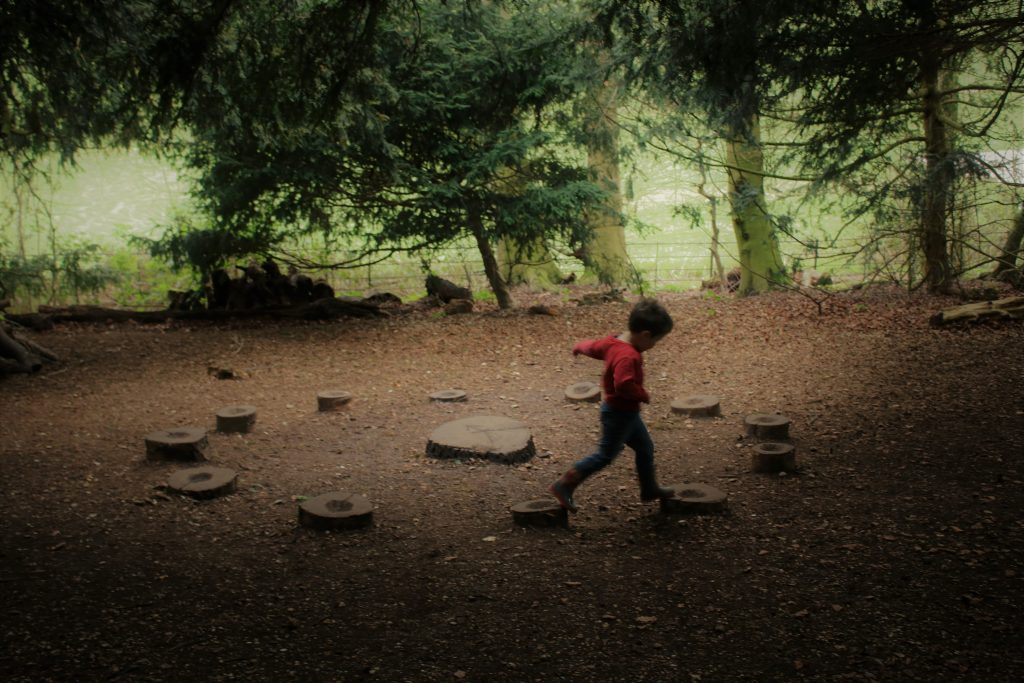 cody stepping on the stepping stones circle in the woods
