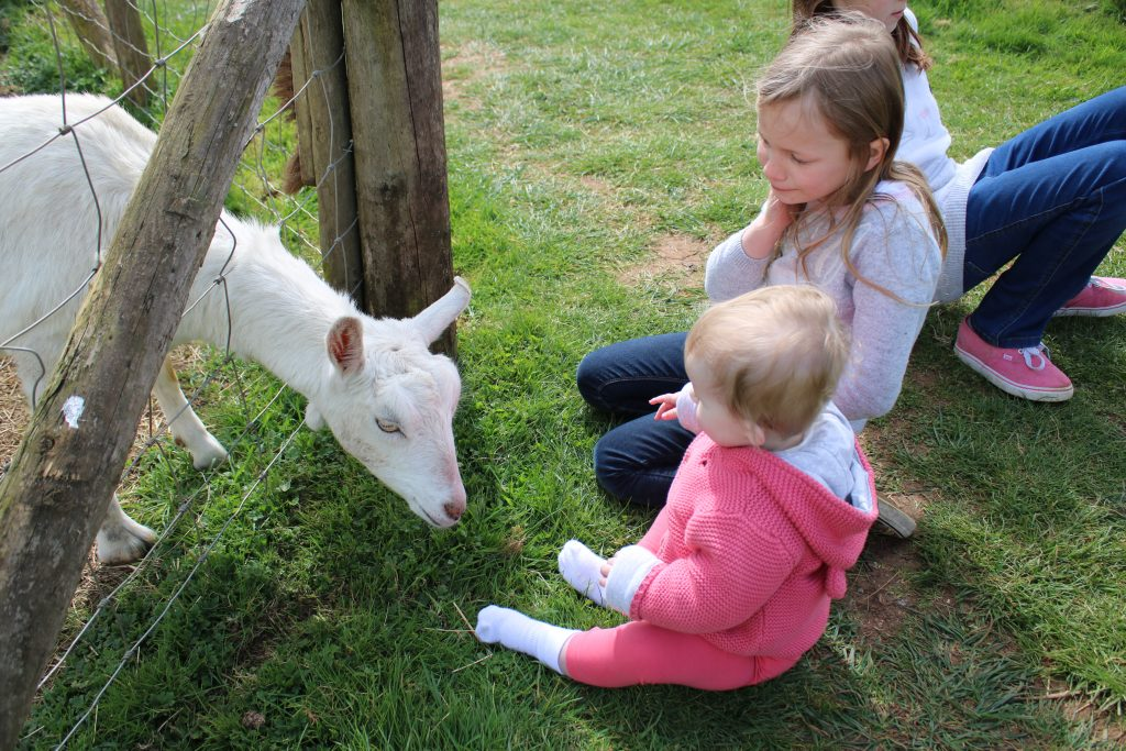 Lois and Savannah with white goat