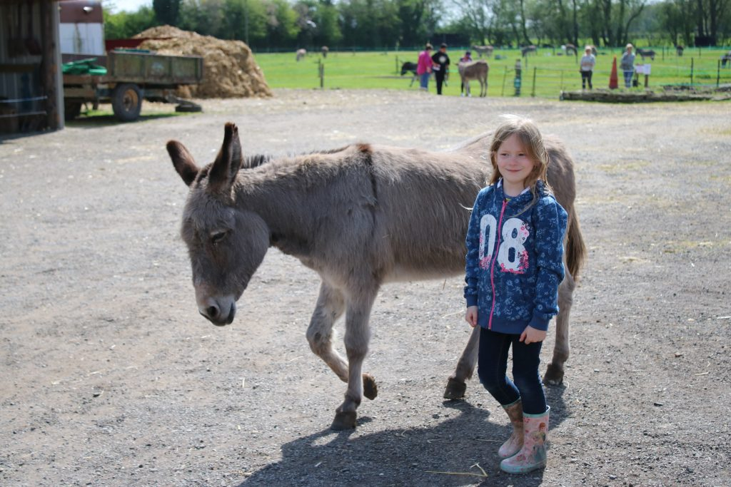 Lois with a donkey
