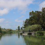 Delta de L'Ebre river boat trip