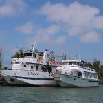 boats on the Delta de L'Ebre
