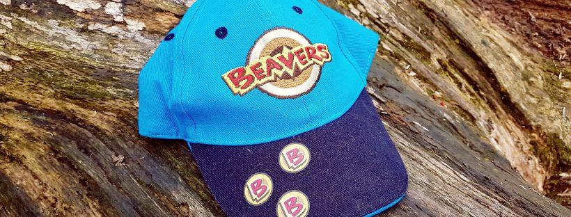 Beavers cap on a log