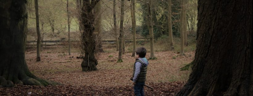 Boy explorng the woods in Autumn surrounded by leaves
