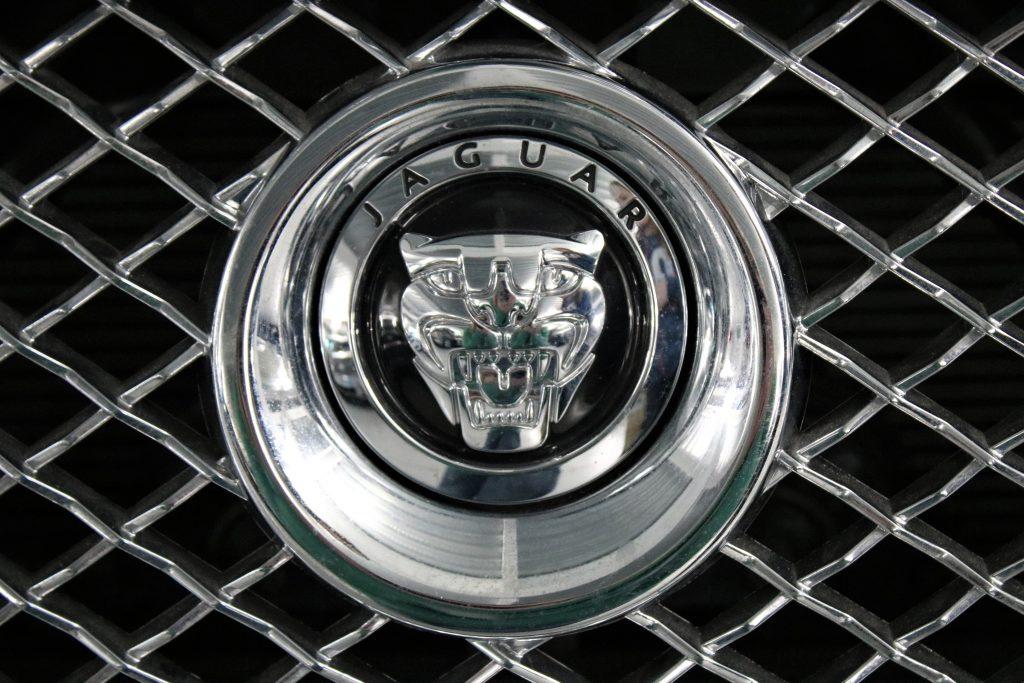 Jaguar car emblem in chrome