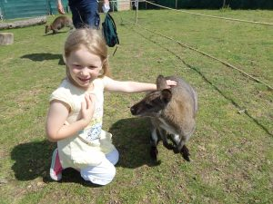 Wallaby walk at amazon world, Isle Of Wight