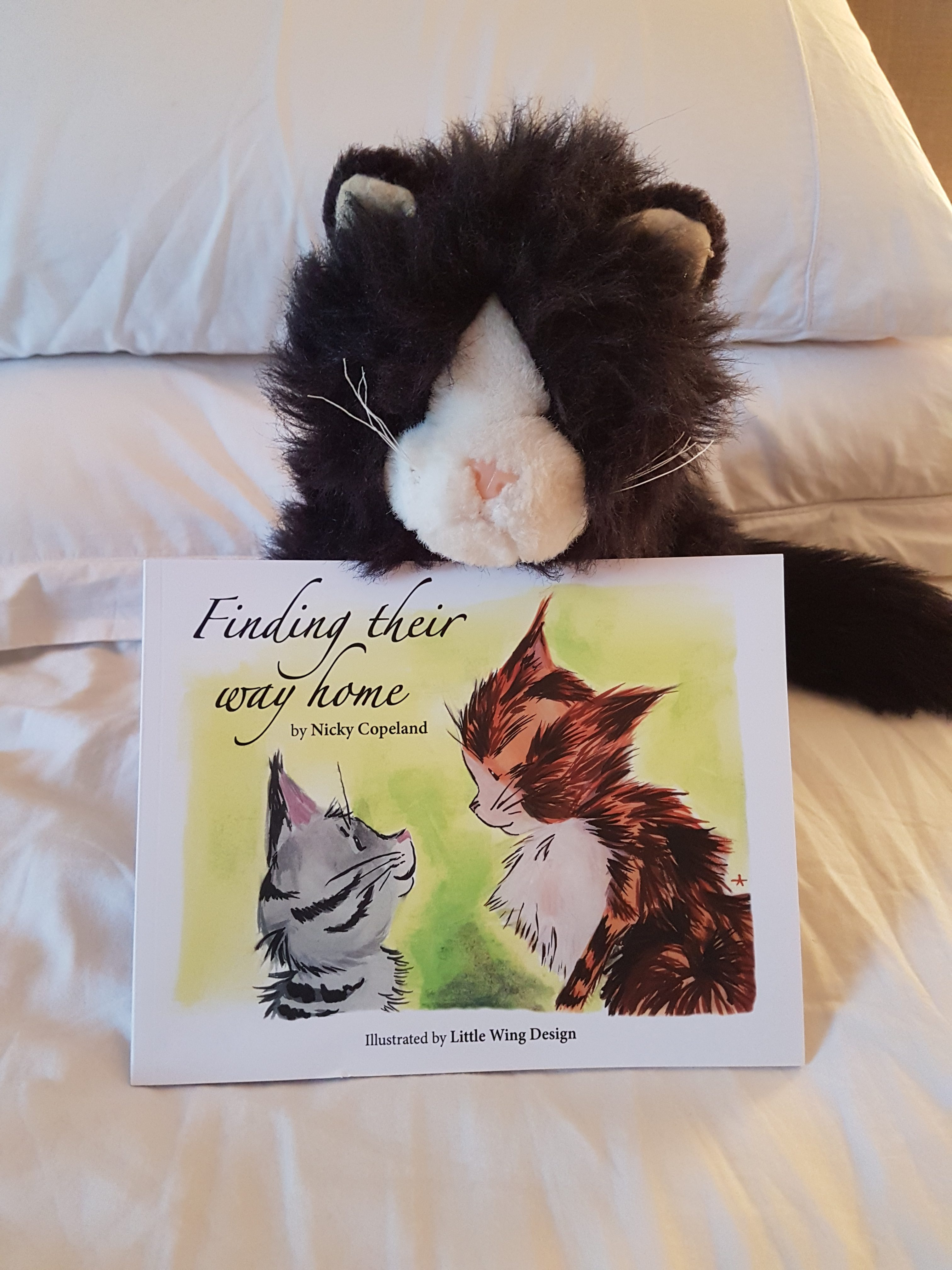 cat soft toy holding Finding Their Way Home book