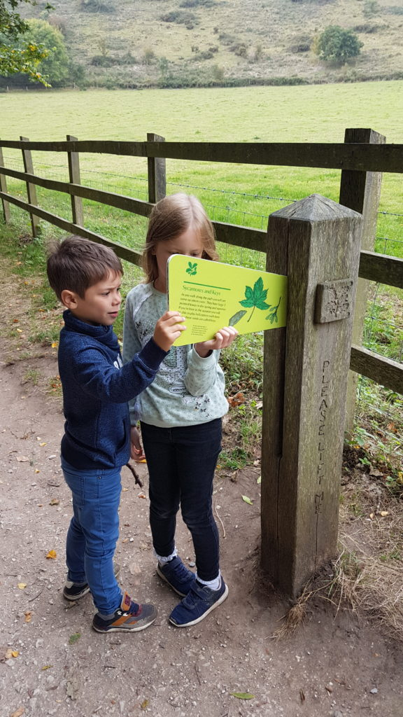 wildlife information posts