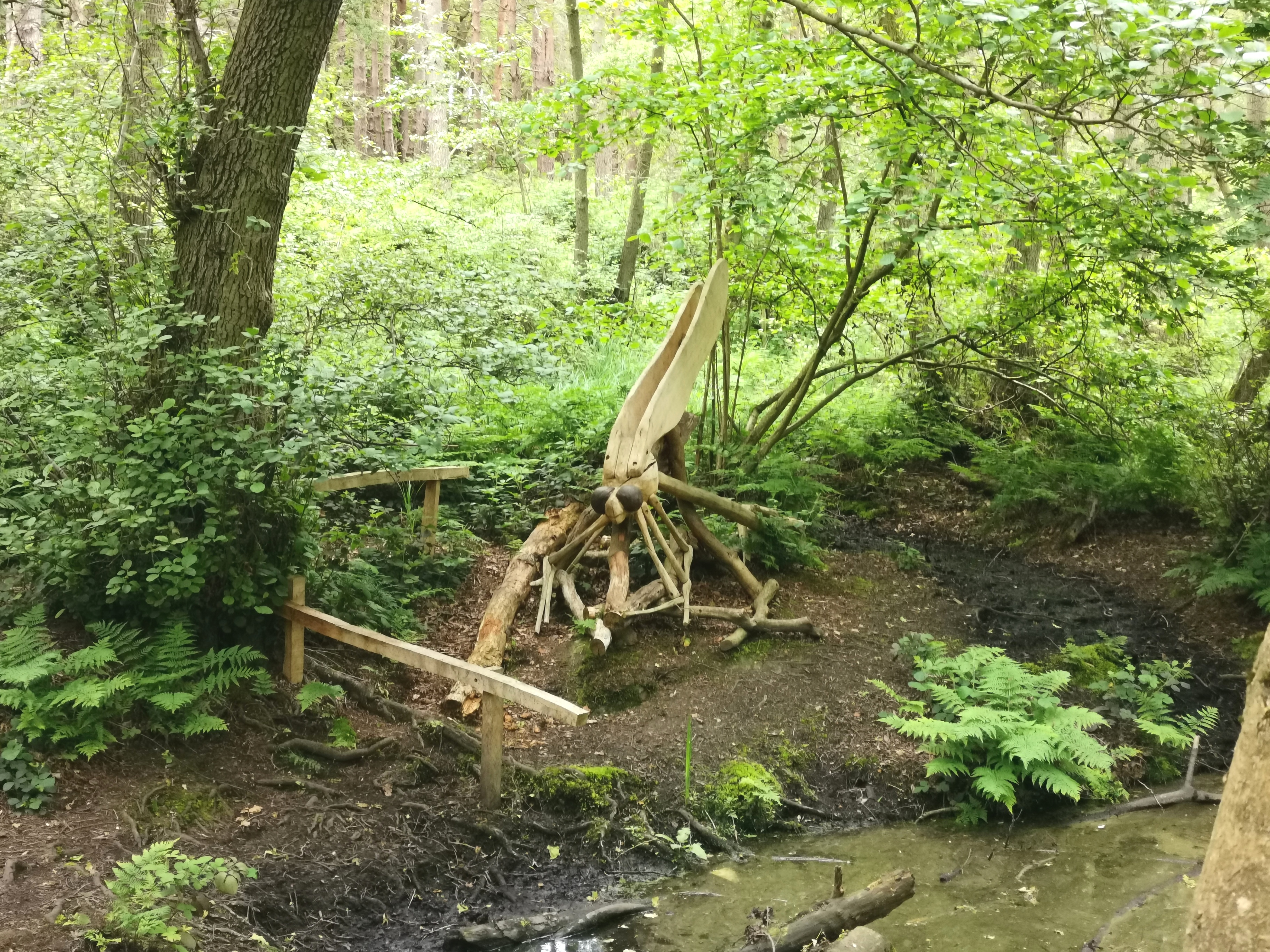 Oak dragon fly sculpture at Rushmere Country Park