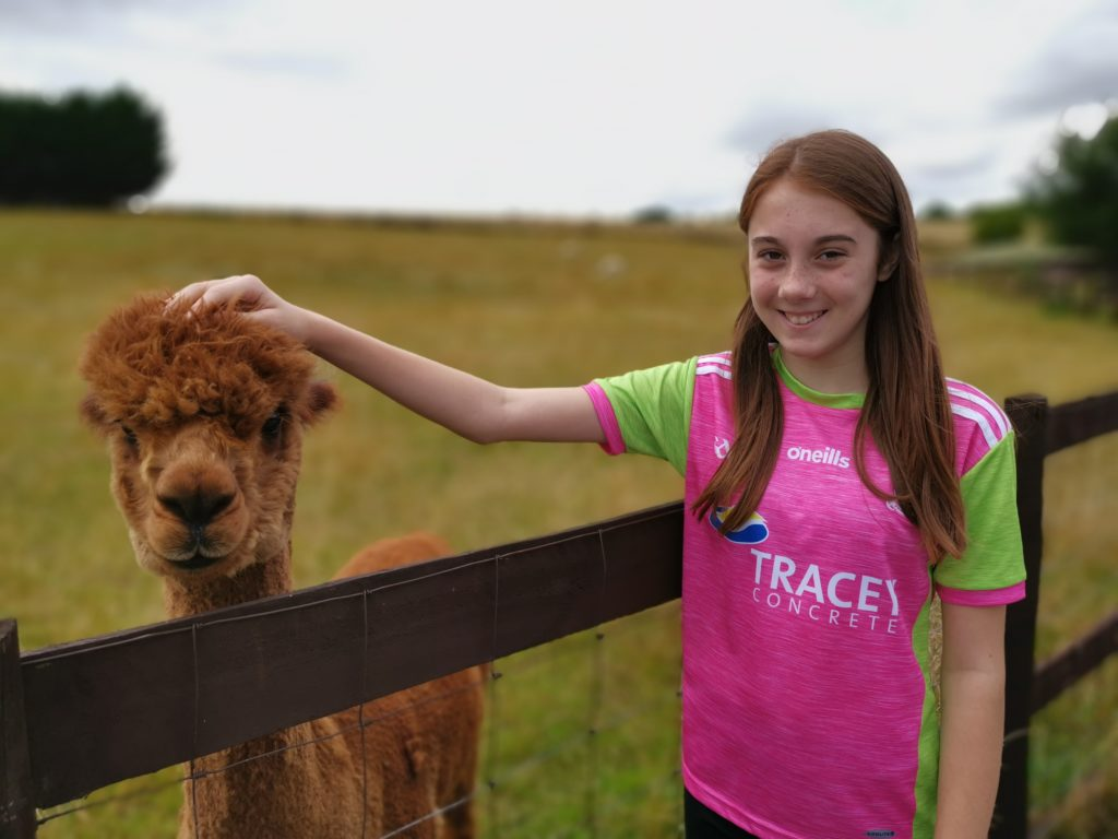Lily with an alpaca