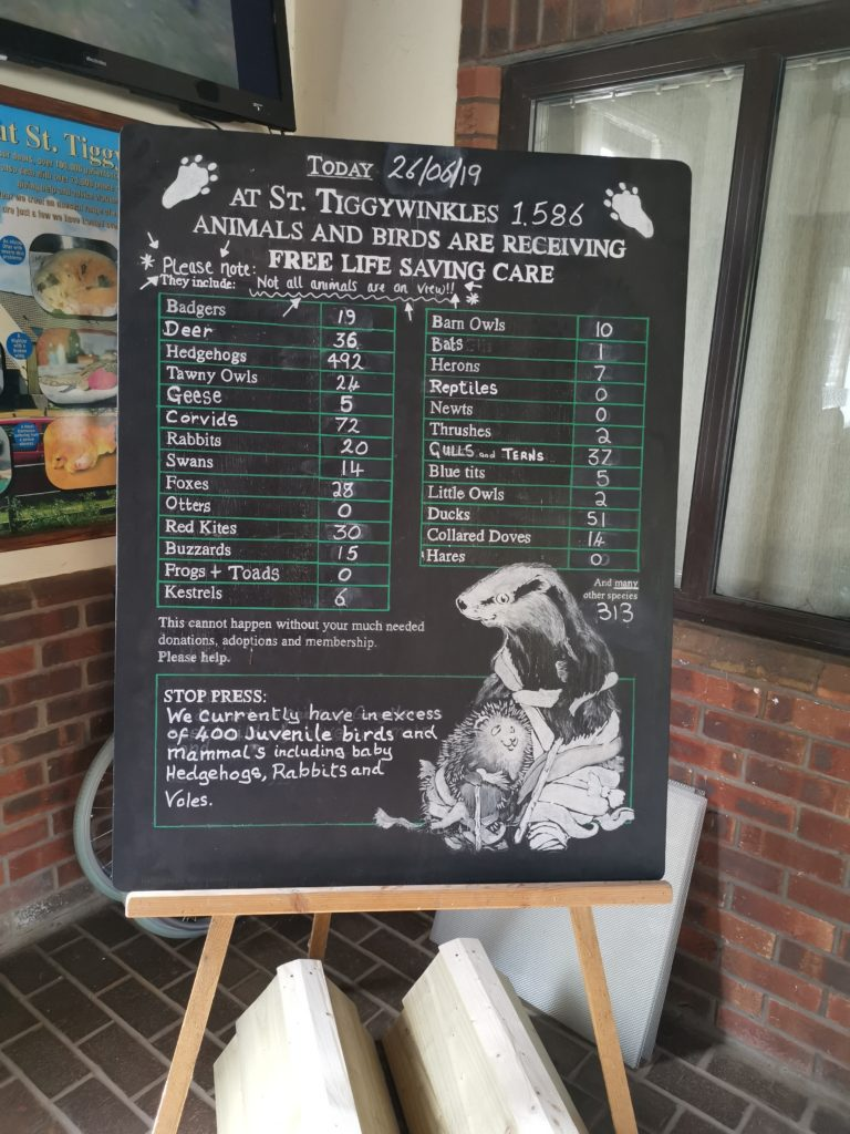 Chalkboard with list of current animal patients at Tiggywinkles Wildlife Hospital