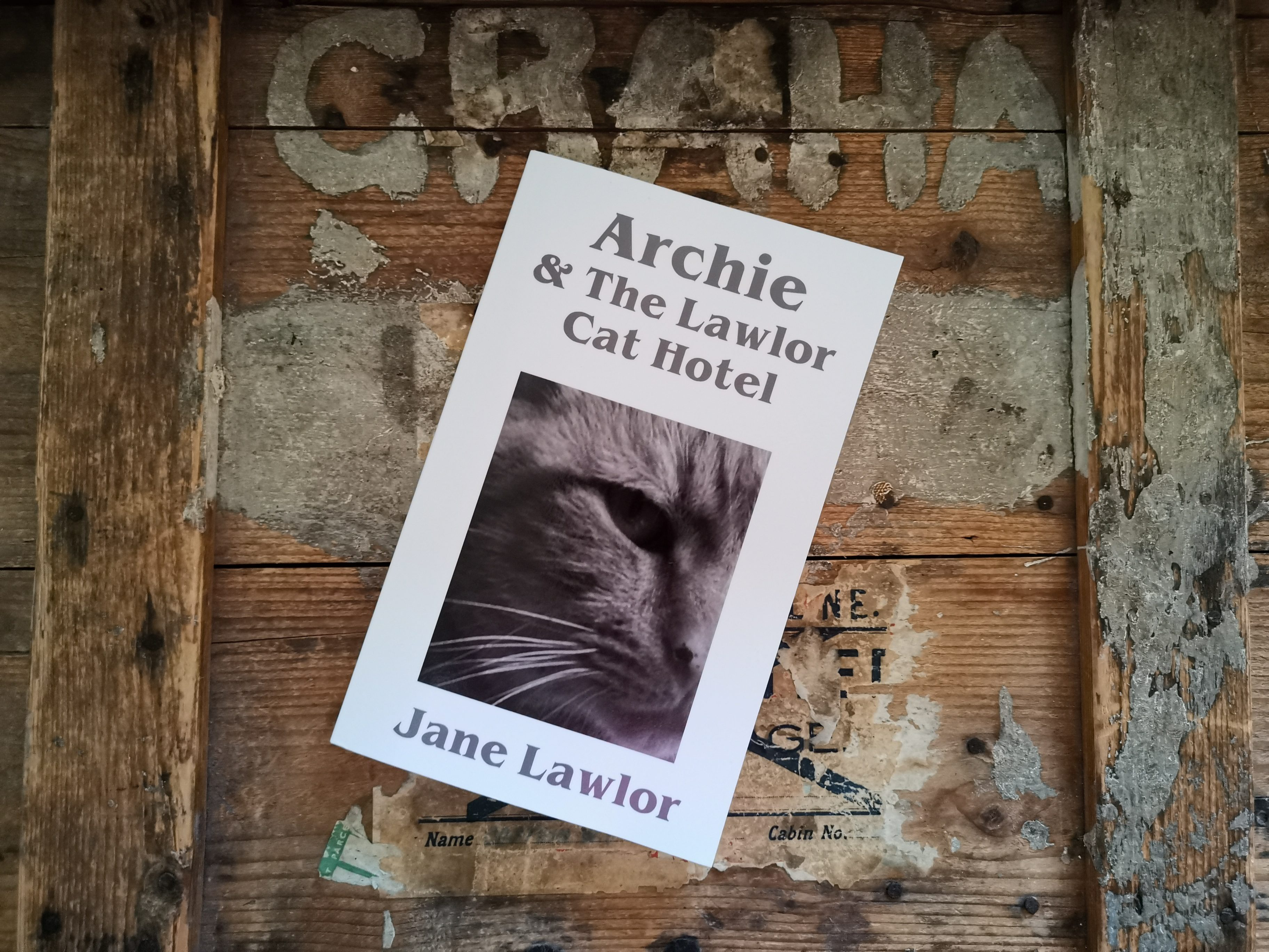 Archie & The Lawlor Cat Hotel book