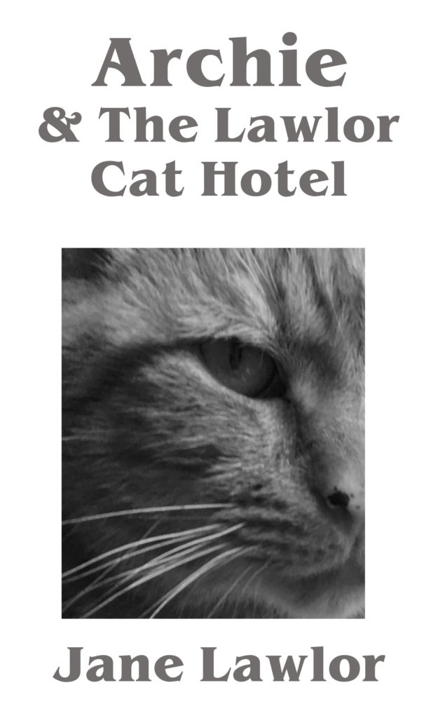 Archie & The Lawlor Cat Hotel front cover