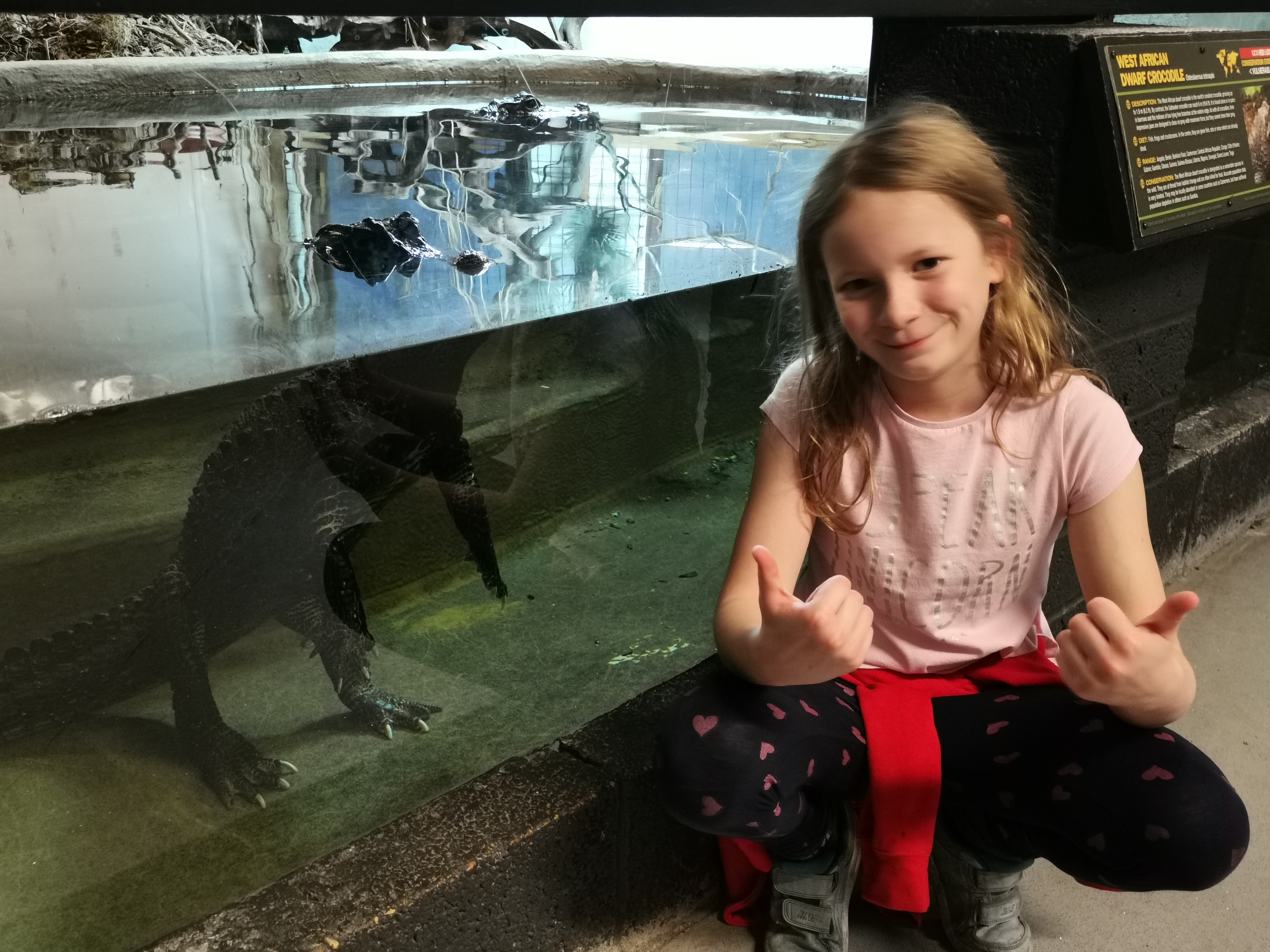 Lois bent donw next to a crocodile in its water enclosure