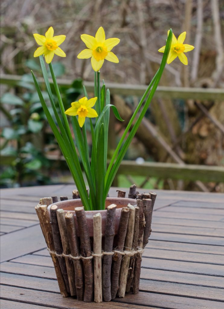 twig wrapped plant pot