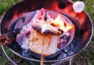 marshmallow melting in front of the campfire