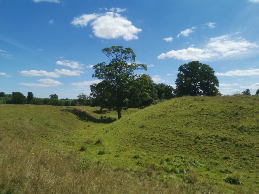 Tree and mound in castle meadows