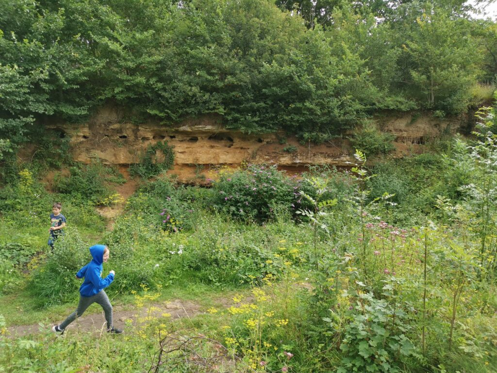 Kids running through meadow in front of cliffs