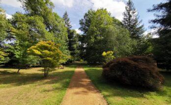 Parkland view in Harcournt Arboretum