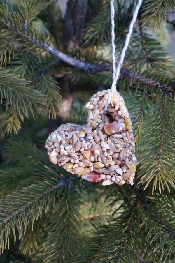 Cookie cutter bird feeder