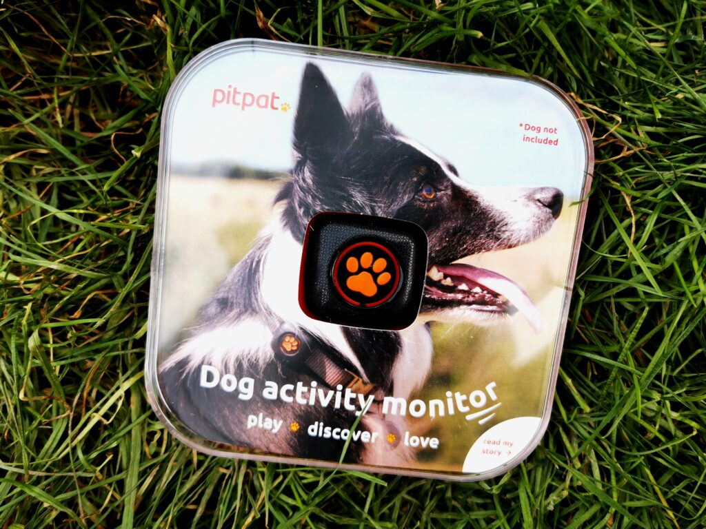 PitPat in it plastic case packaging laid on grass