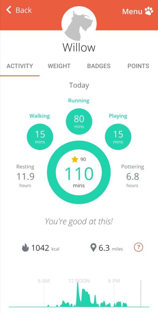 PitPat dog activity data on the app