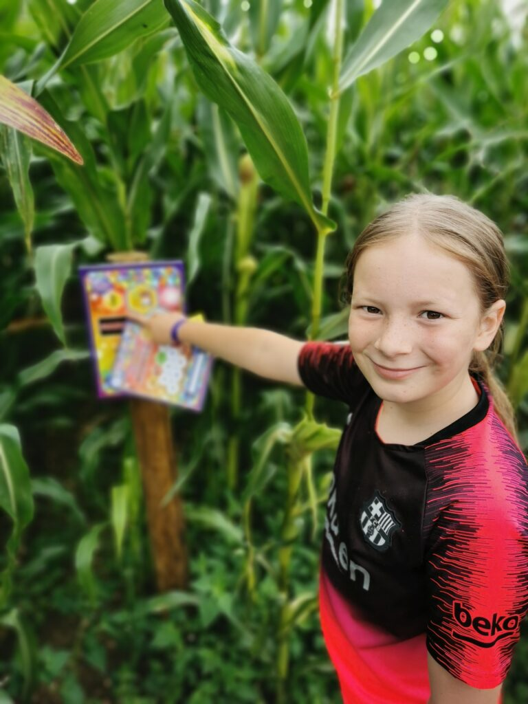Finding clues in Millets Maize Maze